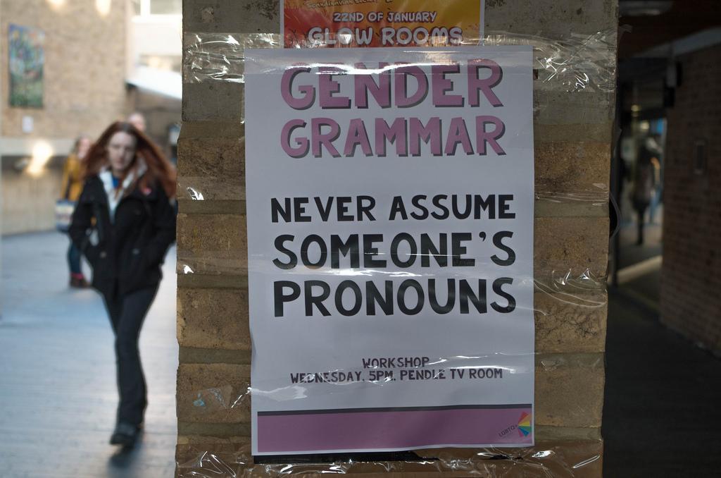 Infinite Gender Pronoun Insanity