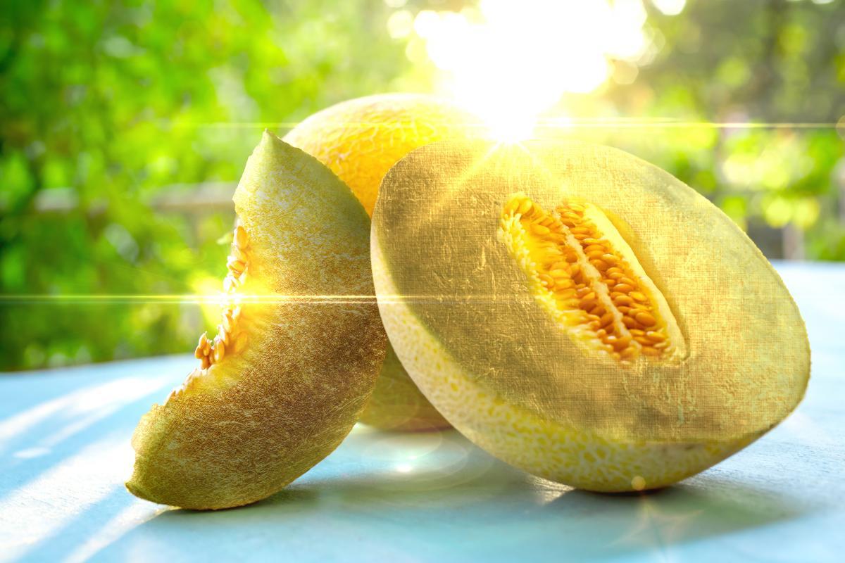 excellent melon