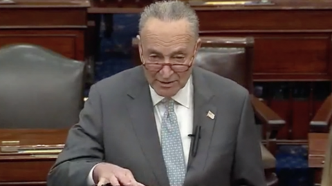 Schumer Claims: Trump Could Have FBI 'Investigate Hillary Clinton'- Calls For More Trump Investigations